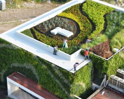 Benefícios dos telhados verdes - Merc. das Prateleiras